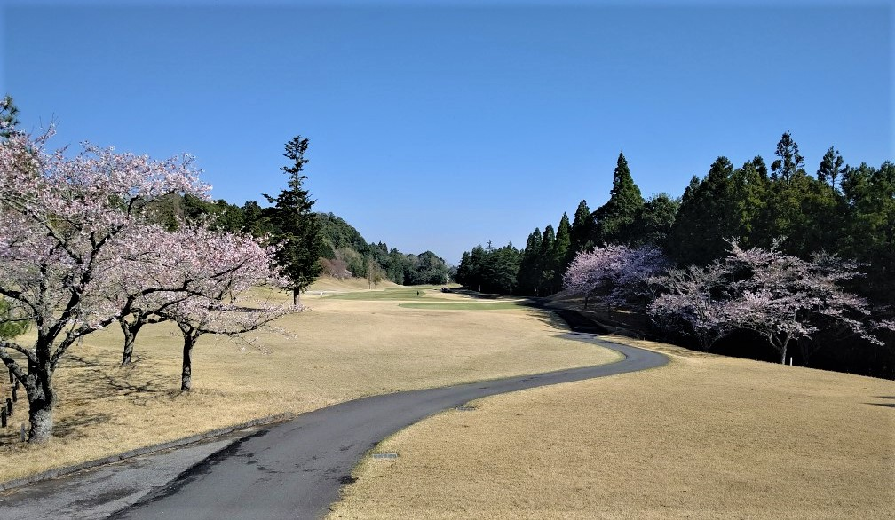 ムーンレイクゴルフクラブ鶴舞コース(セントレジャーGC千葉)