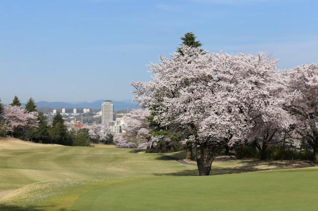 東京都・桜ヶ丘カントリークラブ