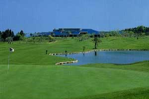 ハイビスカスゴルフクラブ