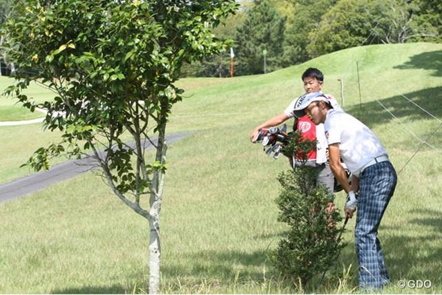 エキストラ1ホール目、ティショットが木の前に止まりピンとは反対向きに脱出をした大堀裕次郎