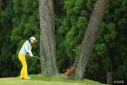 2014年 日本女子オープンゴルフ選手権競技 最終日 イ・チヒ