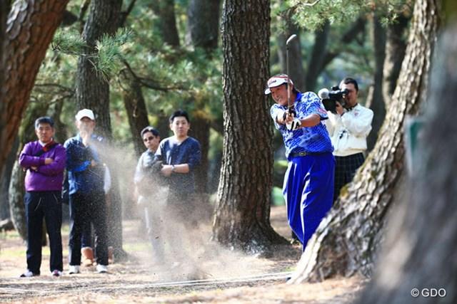 2014年 ダンロップフェニックストーナメント 初日 尾崎将司 ちょっと曲がるとご覧の通り林の中