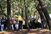 2014年 ダンロップフェニックストーナメント 最終日 松山英樹