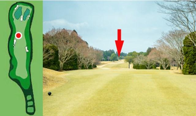 (赤丸と赤矢印)GC成田ハイツリー18番ホールのIP。たしかに第2打が有利に打てるポイントのようだ。