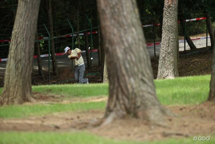 ピンボール状態でしたよ。結局ボールは木に当たり飛距離はマイナス30ヤードぐらい? 2015年 日本ゴルフツアー選手権 Shishido Hills 初日 佐藤達也
