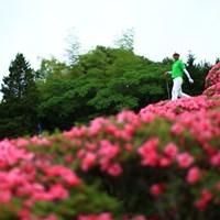 最終日最終組で撮影したいからロケハン 2015年 日本ゴルフツアー選手権 Shishido Hills 2日目 桑原克典