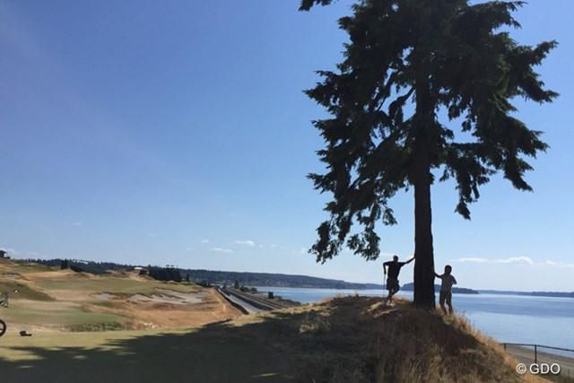 コース内に唯一残された木が16番ティの脇に立つ。日中はちょうど良い木陰も作ってくれる。テイラーと筆者。