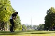 2015年 日本オープンゴルフ選手権競技 2日目 アダム・スコット