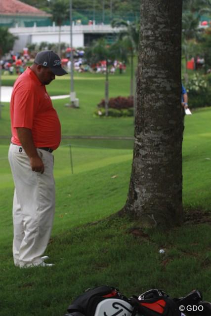 木の根っこについた球を見て思案するブレンドン・デ・ヨング