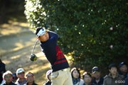 2015年 ゴルフ日本シリーズJTカップ 3日目 片岡大育