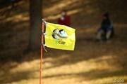2015年 ゴルフ日本シリーズJTカップ 最終日 旗