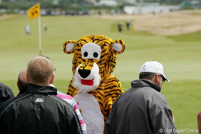 2009年 全英オープン3日目 タイガー 予選落ちしたんじゃなかったっけ?