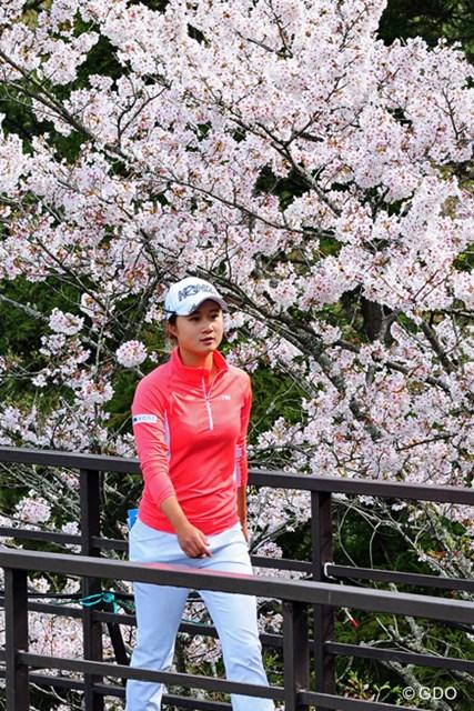森の桜の小路を行く春か(遥)。スコアを1つ落とし、かろうじて予選通過の40位タイ
