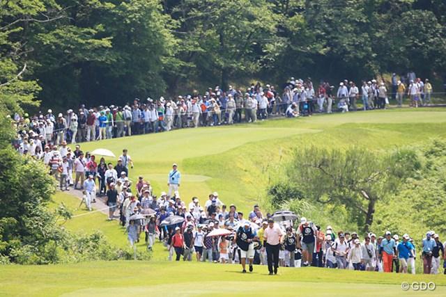 42年ぶりの和歌山開催。最終日は6,000人を超えるギャラリーが来場した