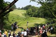 2016年 関西オープンゴルフ選手権競技 最終日 8番