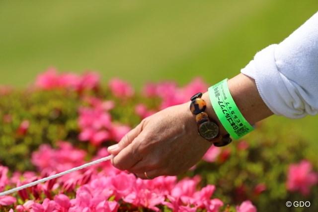 2016年 日本ゴルフツアー選手権 森ビルカップ Shishido Hills 3日目 入場チケット リストバンドになった入場チケット。再入場する際にカバンから出す作業もなくなった?