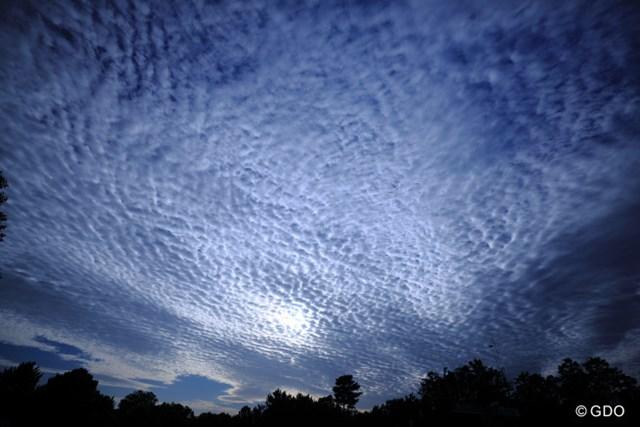 すごい鱗雲だったよ。