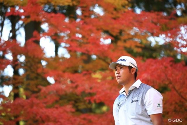 日本の秋も捨てたもんじゃないでしょ。松山プロ。