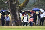 2016年 LPGAツアー選手権リコーカップ 最終日 鈴木愛