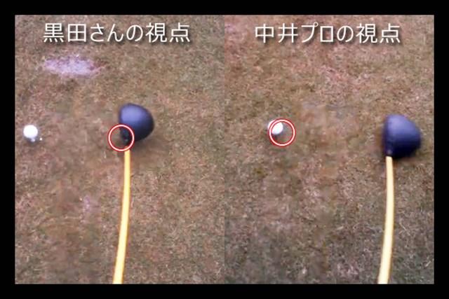 視点(赤マル)の位置の違いは明確