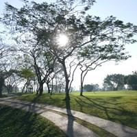 朝は清々しい空気に包まれるパンラインGC 2017年 レオパレス21ミャンマーオープン 2日目 コース