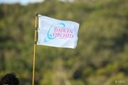 2017年 ダイキンオーキッドレディスゴルフトーナメント 最終日 旗