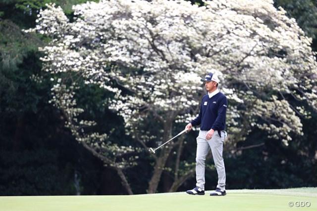 2017年 パナソニックオープンゴルフチャンピオンシップ 2日目 岩田寛 背景の白い花は何だろう?ついついシャッターを切ってしまった