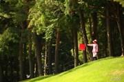 2017年 日本ツアー選手権 森ビル杯 Shishido Hills 最終日 フォアキャディ