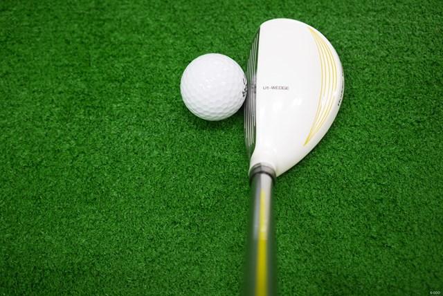 ヘッド体積は113cc。フェースは面長、クラウンが膨張色のホワイトなので見た目はかなり大きく感じる