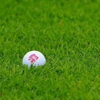 なんでシーサーさー? 2017年 ゴルフ5レディス プロゴルフトーナメント 初日 山城奈々