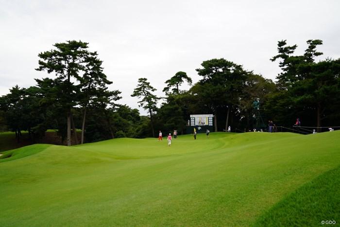 わかるかな、このアンジュレーション。すごいよ。 2017年 日本女子オープンゴルフ選手権競技 初日 14番