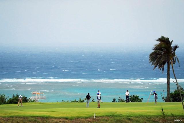 バミューダ芝と吹き荒れる海風との組み合わせは大敵