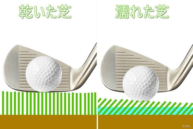 芝が立った状態(画像左)と倒れた状態(右)の高さの差は約1mm