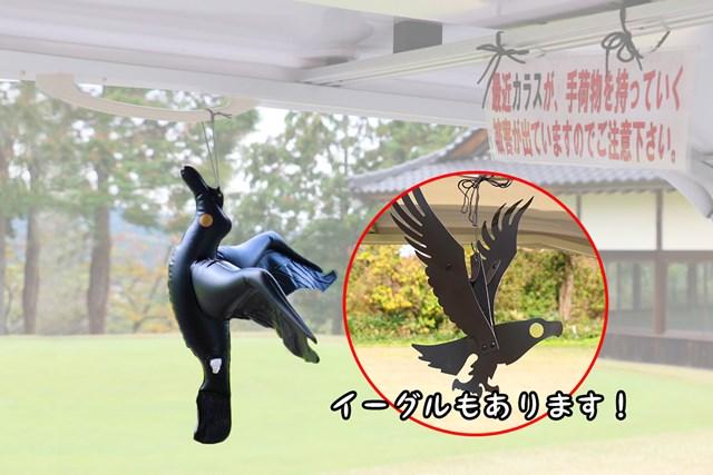 鳥よけイーグル 吊りひも付、鳥よけビニールカラス 吊りひも付(ダイソー)