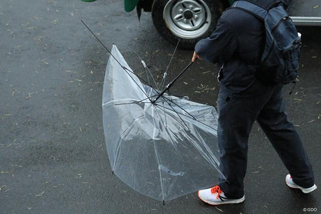 傘も無意味でしたね。
