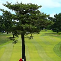 目の前に木があろうがなんのその。 2018年 関西オープンゴルフ選手権競技 最終日 小斉平優和