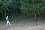 2009年 ゴルフ日本シリーズJTカップ 2日目 池田勇太