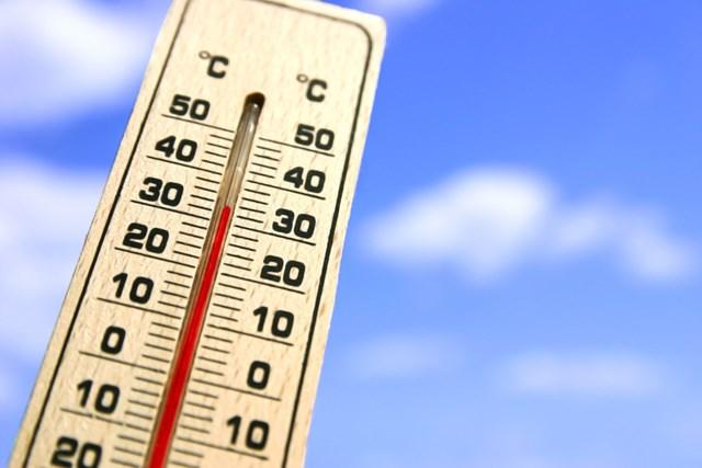各地で高温注意情報が出ている昨今、熱中症対策はしっかりと。