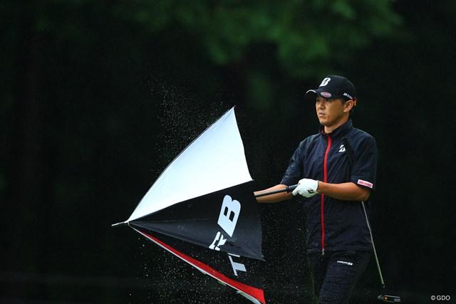 今日は傘が主役