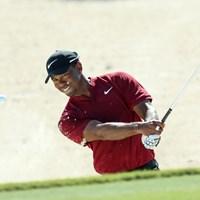 ウッズは1月のチャンピオン大会を欠場。サンディエゴが新年初戦となりそう(Rob Carr/Getty Images) タイガー・ウッズ