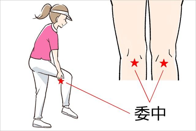 両ひざの真裏のくぼみの中央にあります
