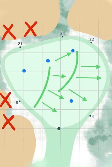 グリーンは左から右に下る。青い印が予想されるピンプレース