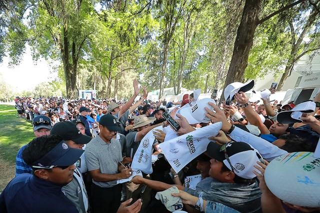 メキシコでも大人気。タイガー・ウッズはサイン攻めにあった( Hector Vivas/Getty Images )