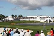 2019年 ザ・ホンダクラシック 事前 PGAナショナル 16番ホール