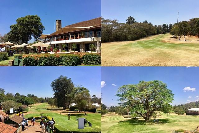 野趣あふれるケニアのゴルフ場