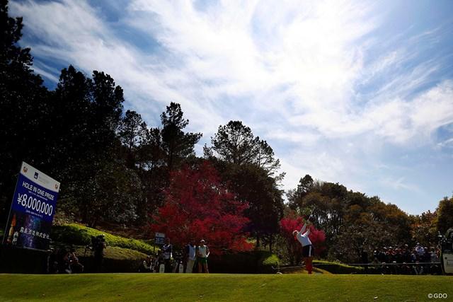 2019年 アクサレディスゴルフトーナメント in MIYAZAKI 最終日 河本結 目指せ800万円!