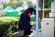 2019年 KKT杯バンテリンレディスオープン 初日 くまモン
