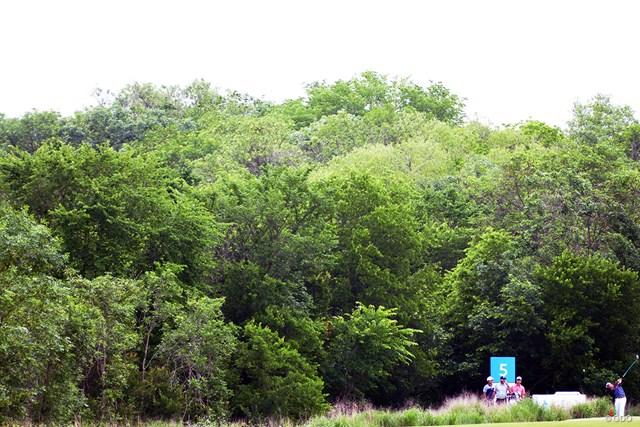 松山英樹を捜せ