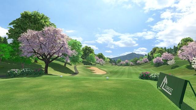 ゲームがスタートすると本当にティグラウンドに立ったかの感覚になる(画像提供:Sony Interactive Entertainment Inc.)