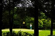 2019年 ~全英への道~ミズノオープン at ザ・ロイヤルGC 2日目 すし石垣